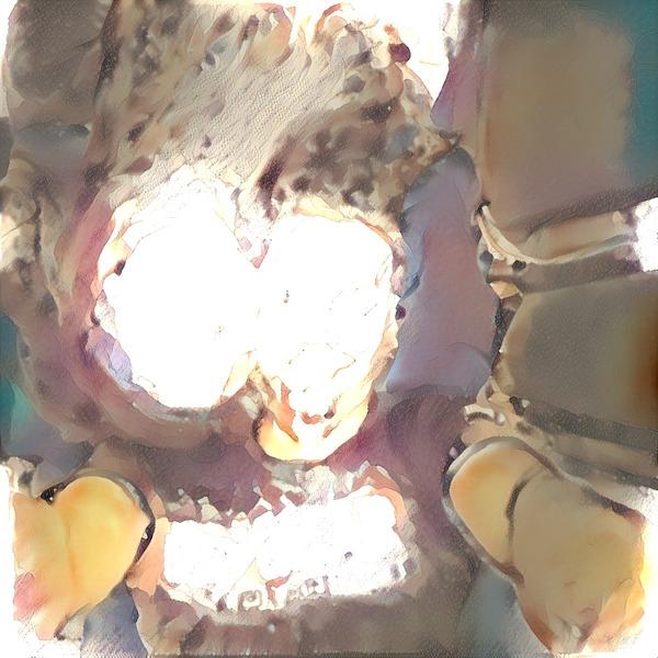 Thumb img2956986 41d906ff149a9b52